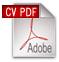 strephen strauss cv in pdf format